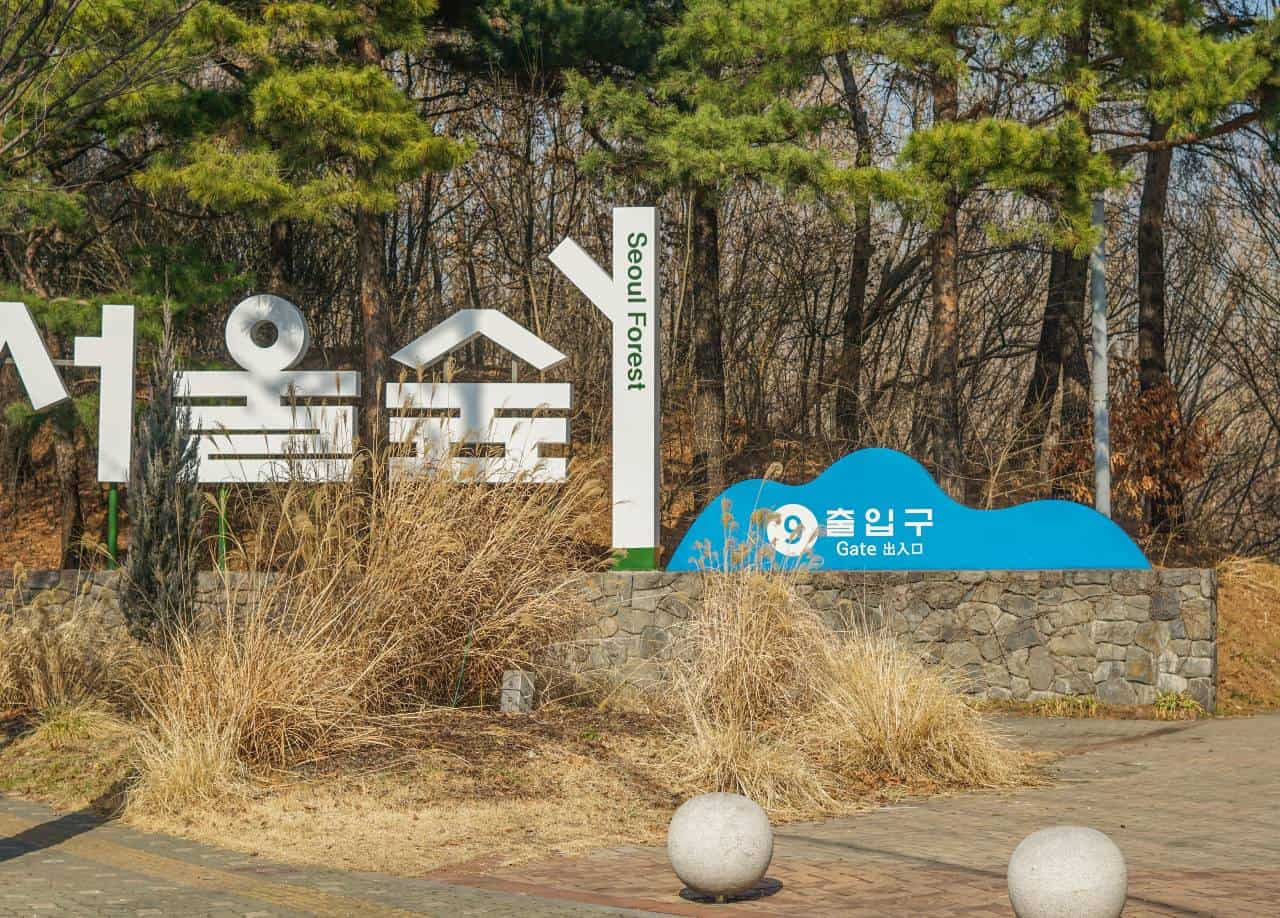 2 days in Seoul, South Korea - Seoul Forest Park